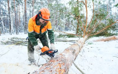 Getting the Job Done in the Wintertime
